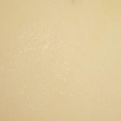 Enduit poussière d'étoile - Gris beige
